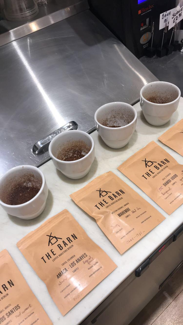barn cupping jan 2019 pic 3.jpg