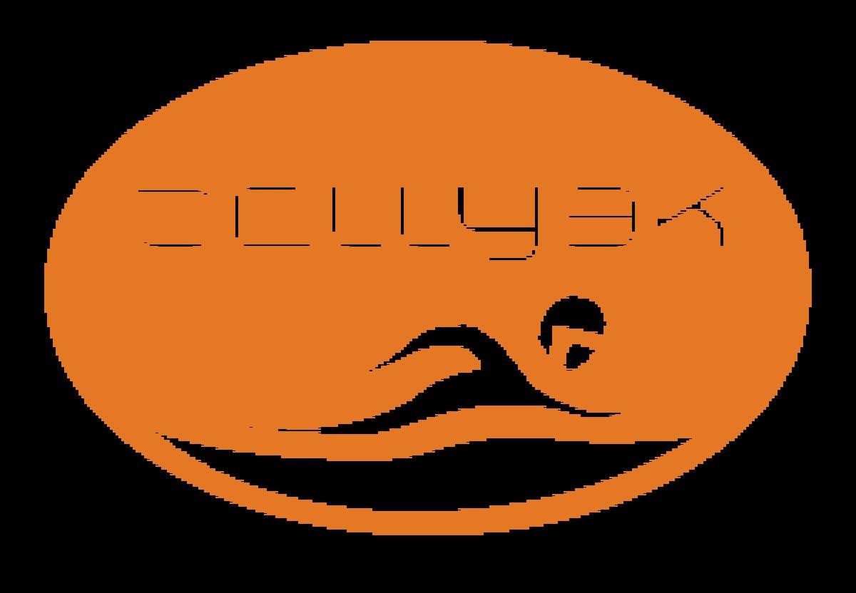 bellyak_logo_orange-e1458584393426-300x208.png