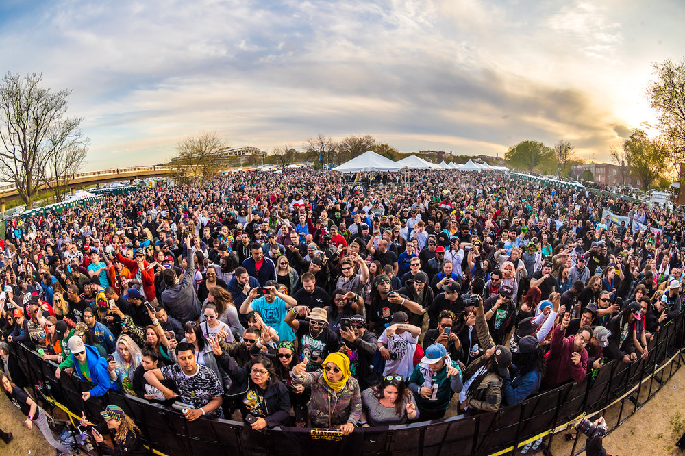 420 Events In Michigan 2020.Tickets National Cannabis Festival