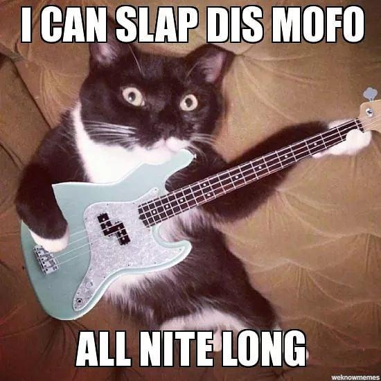 Do you slappa da bass?