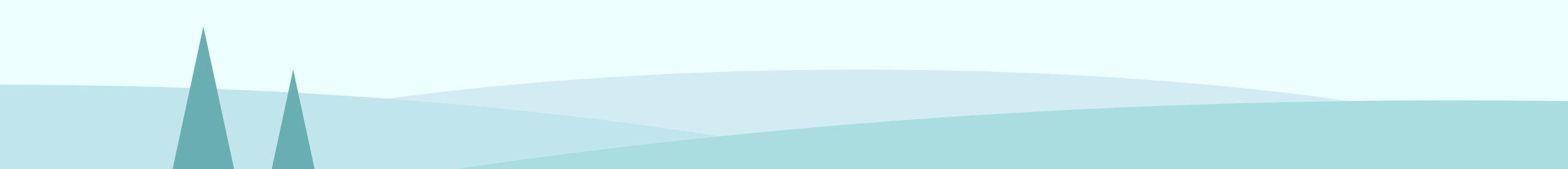 web divider 2.jpg