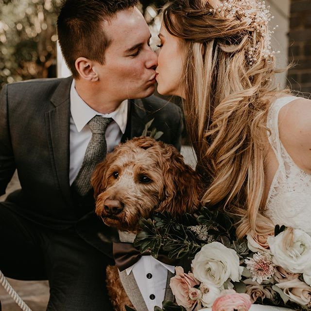 10/10 recommend bringing your dog to your wedding 🐶  s.s for @kalimphotos