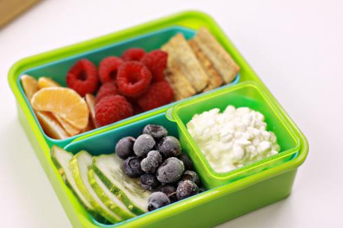 homemade-school-lunch1.jpg