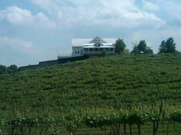 frogtown-cellars-atlanta-wine-tasting1.jpg