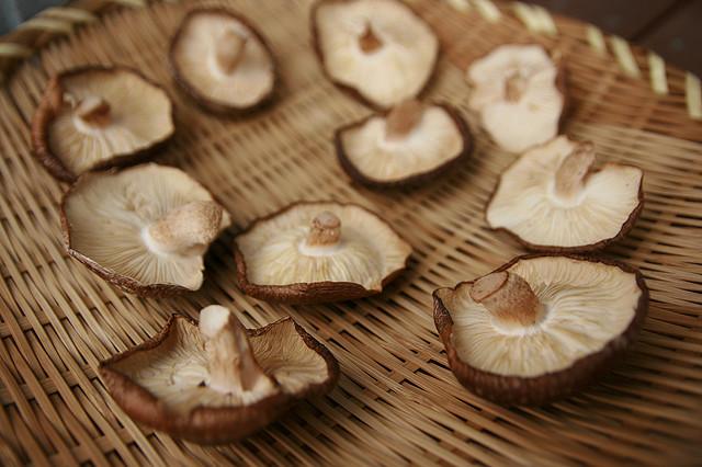 meatless-mushroom-recipes.jpg