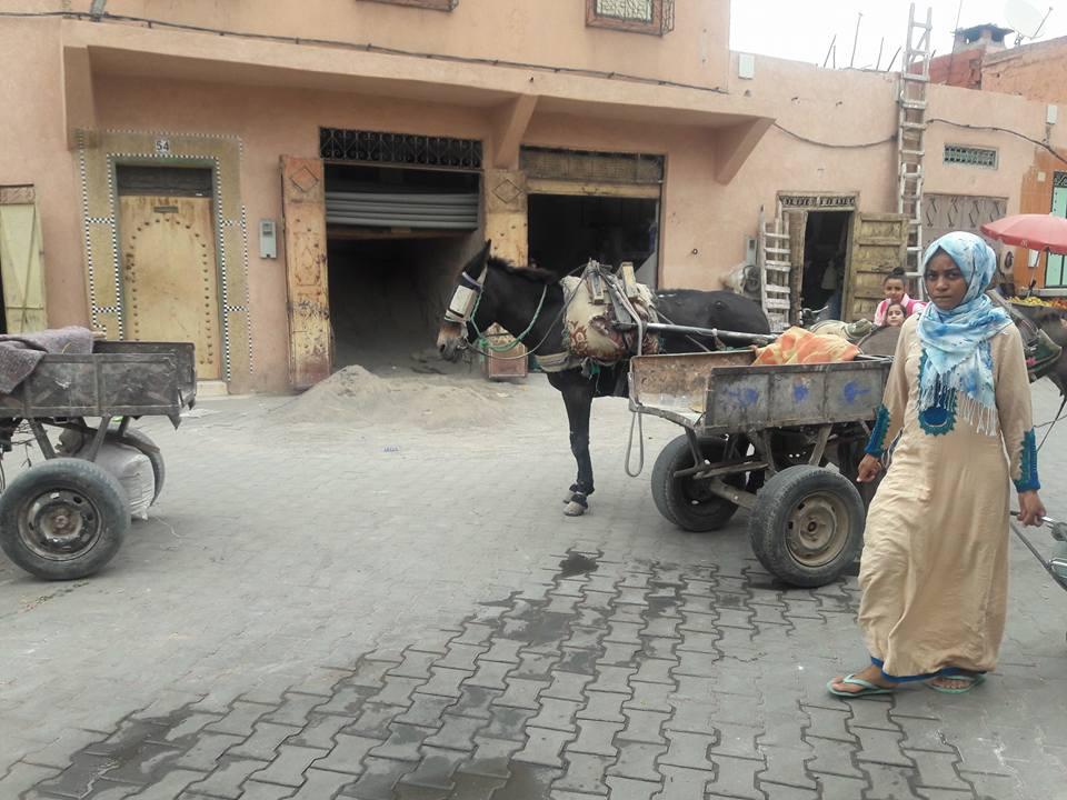solo-travel-marrakechq13.jpg