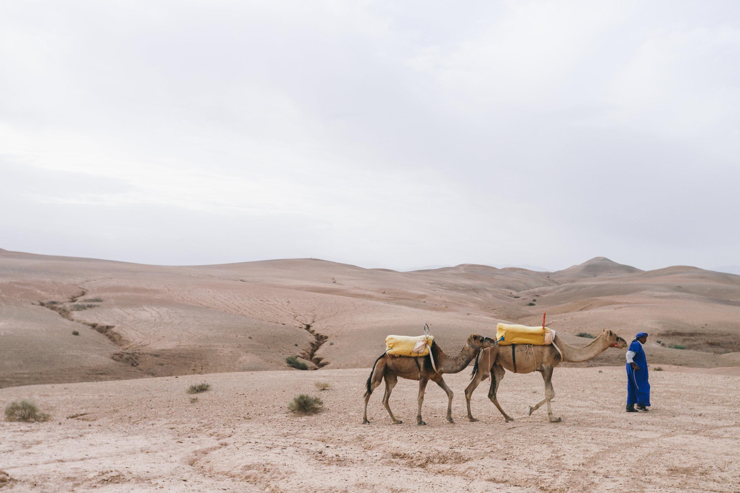 weare.morocco.leia.10.17-167.jpg