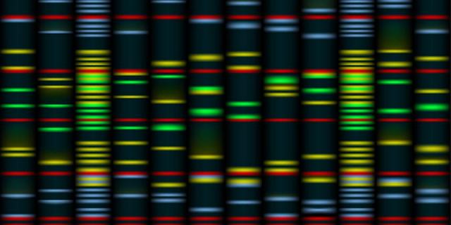Genomics (2).png