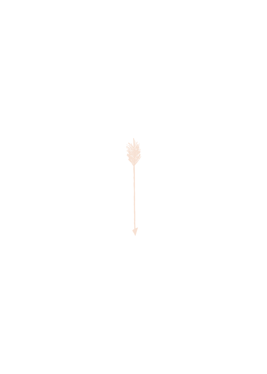 Arrow Down-02.png