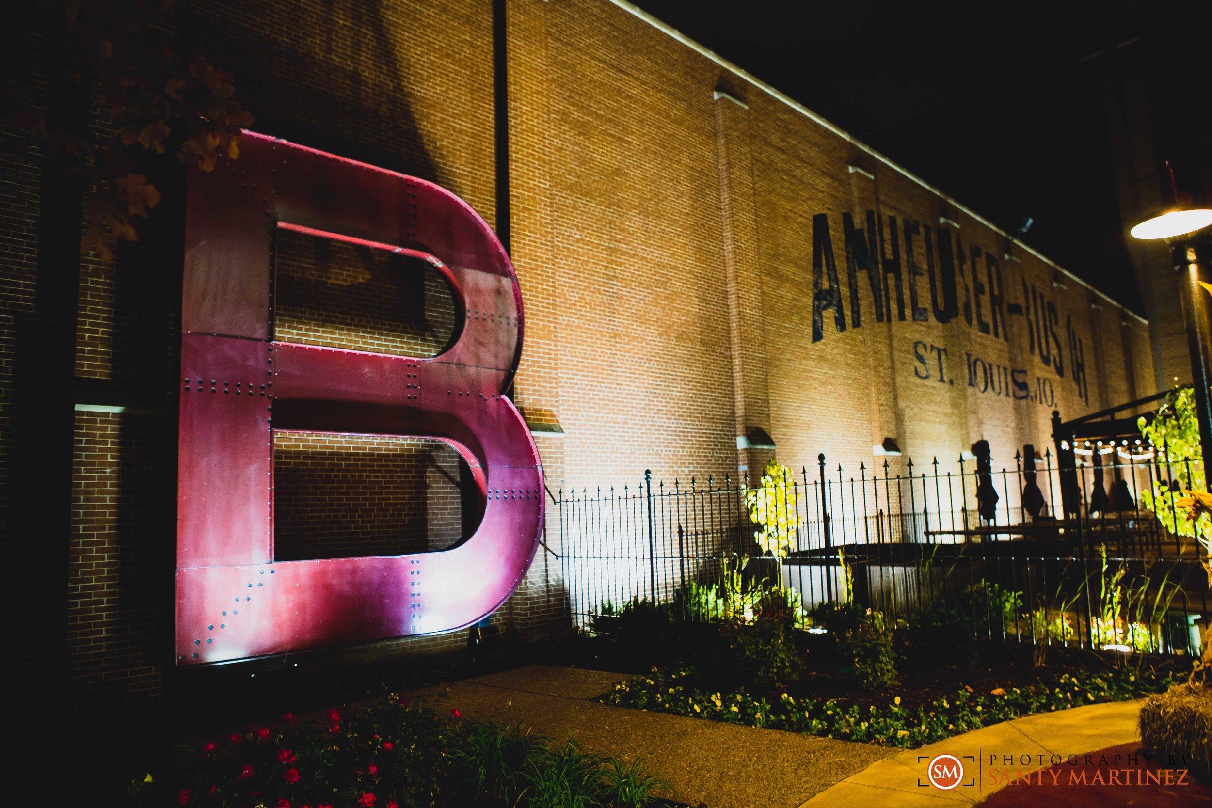 Travel St Louis Missouri - Photography Santy Martinez-36.jpg