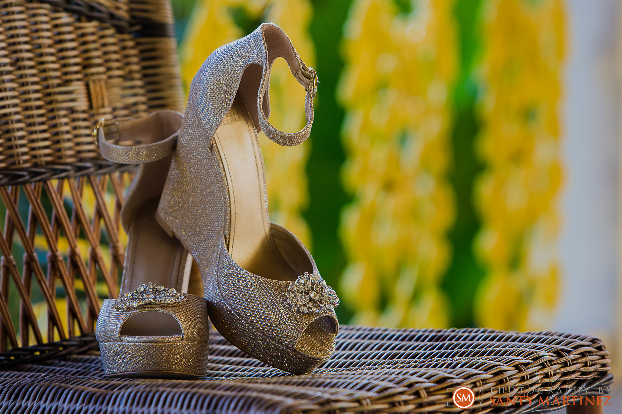 Wedding Bonnet House - Photography by Santy Martinez-2.jpg