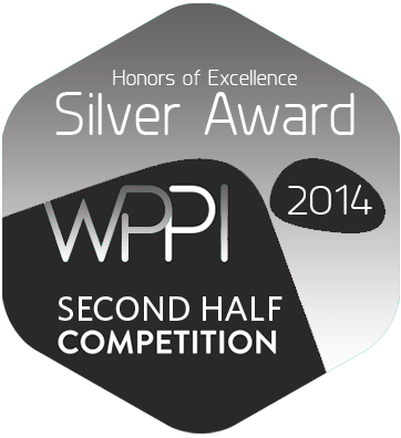 silver 2014 wppi.png