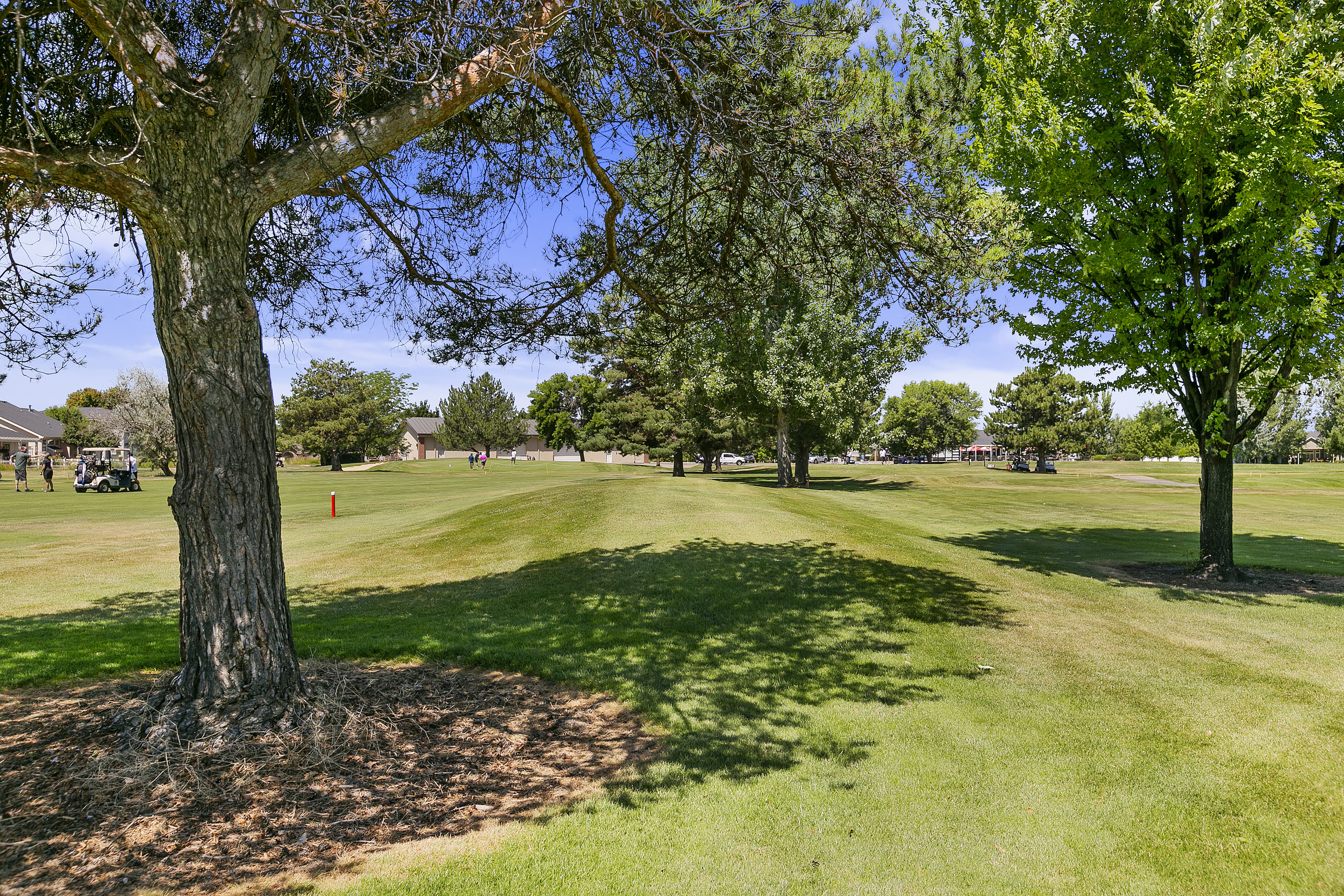 049-Lakeview Golfcourse (12).jpg