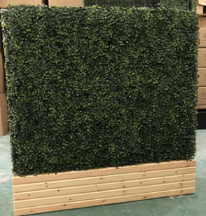 HEDGE WALL 8'.png