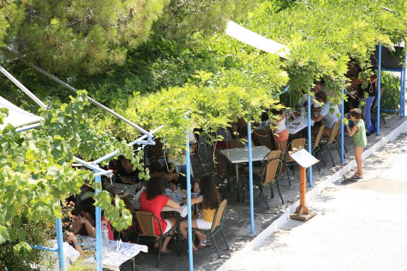 Paradise Restaurant -