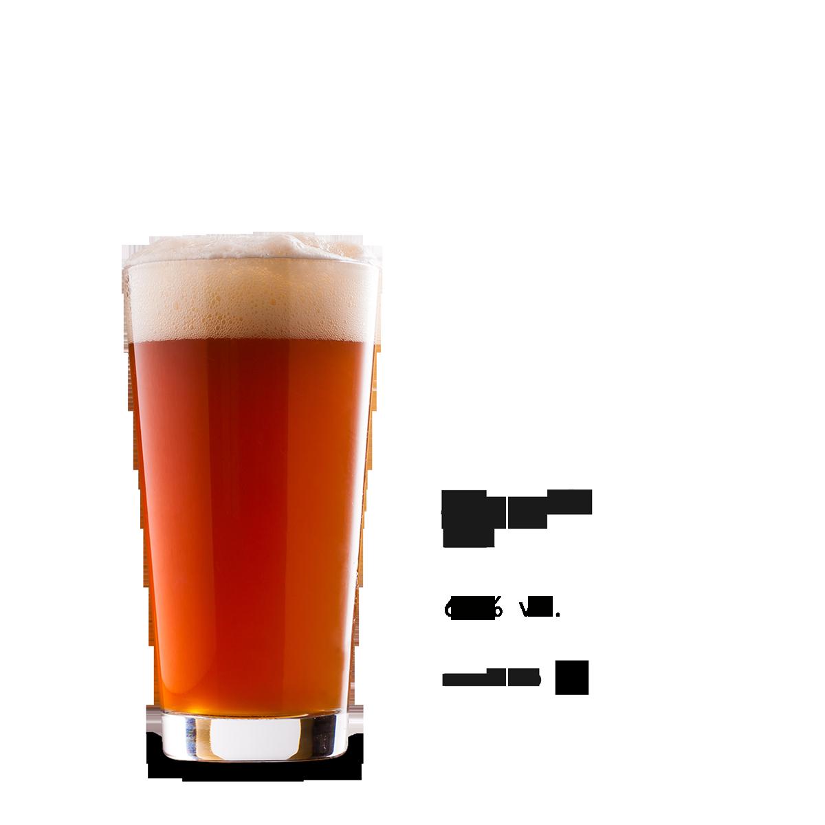 jacaranda_new_2018_italian_craft_brewery_renton.png
