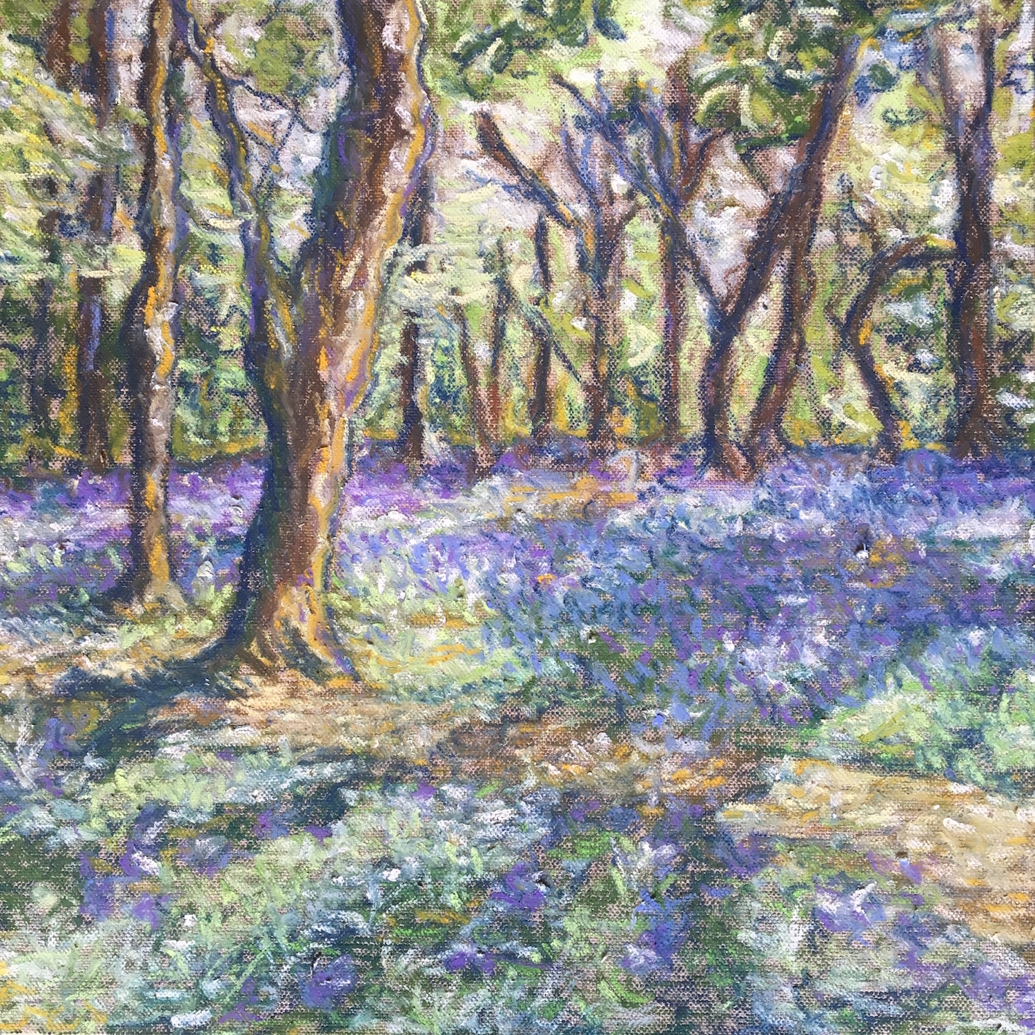 Alice Parsloe Art Bluebells.jpeg