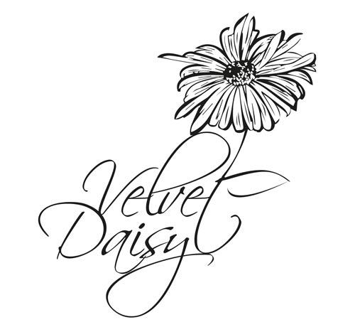 The-Velvet-Daisy.jpg