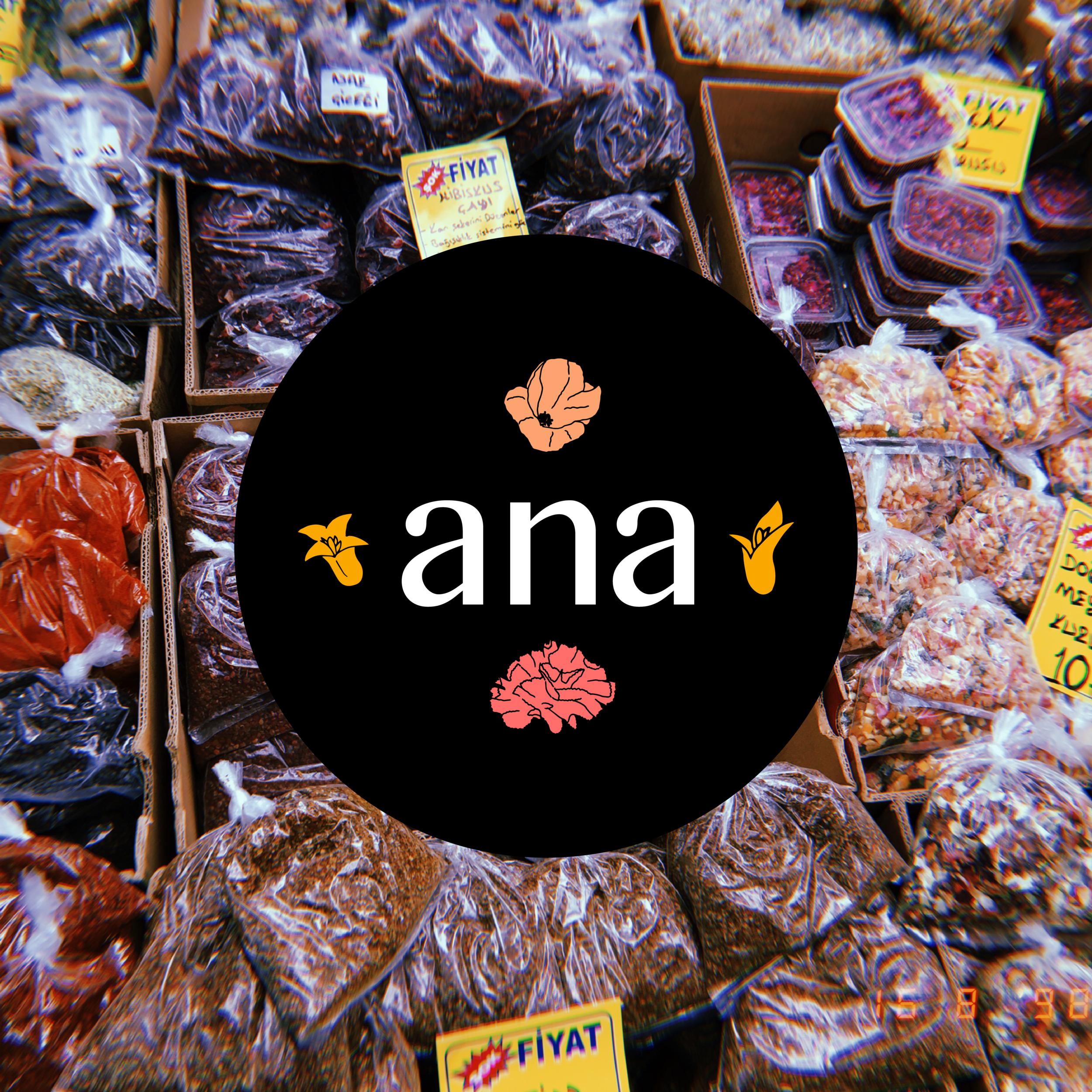 Ana_Logo2.png