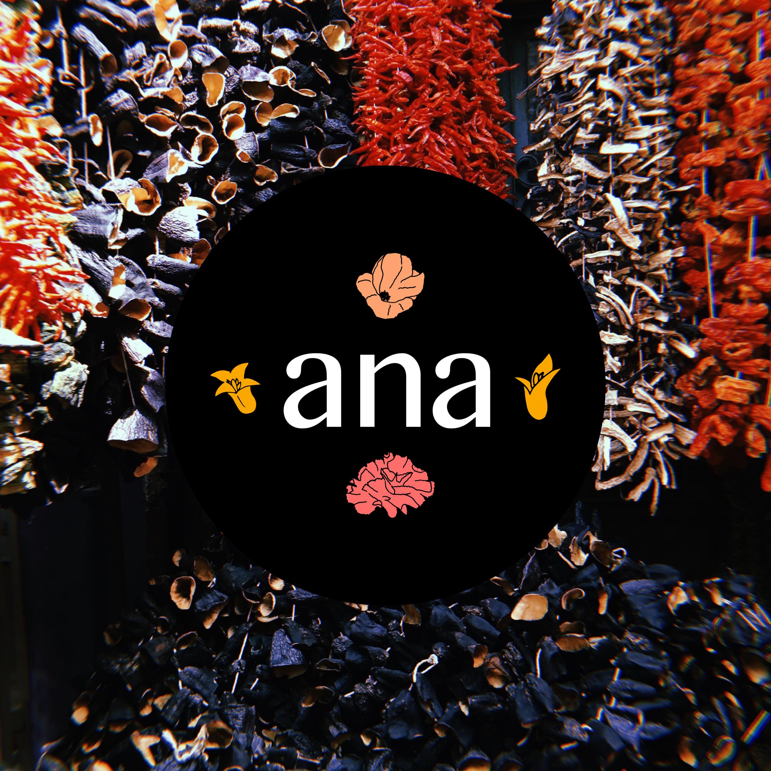 Ana_Logo3.png