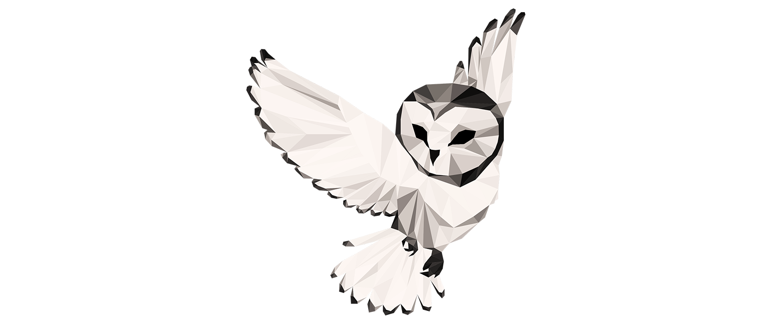 Night Owl Collective.png