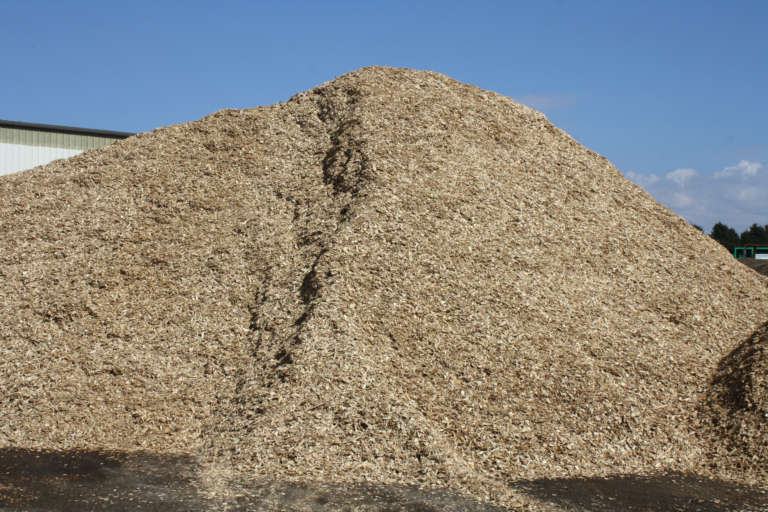 Clean Wood chips pile.JPG
