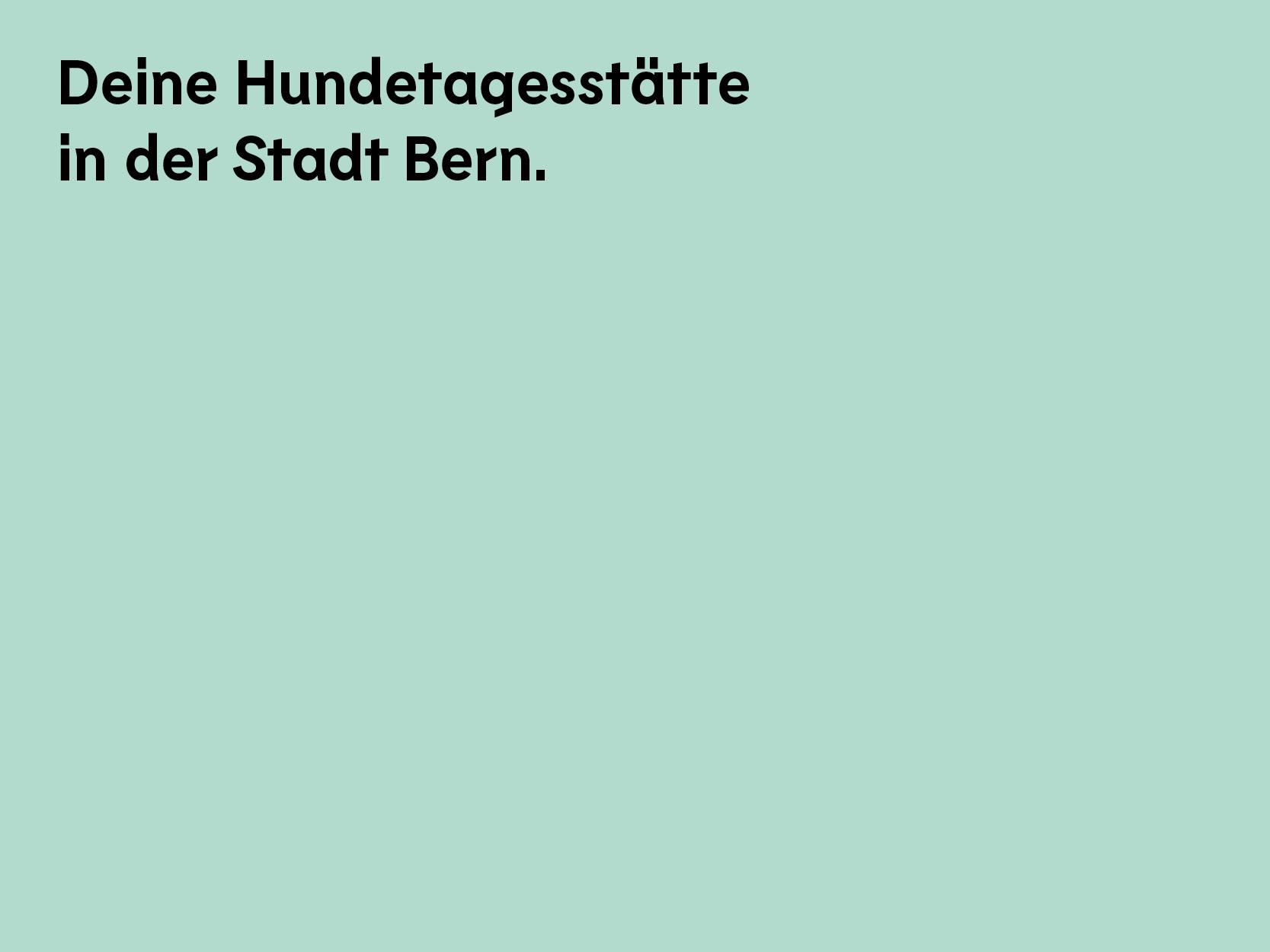 Textfelder-v2.jpg