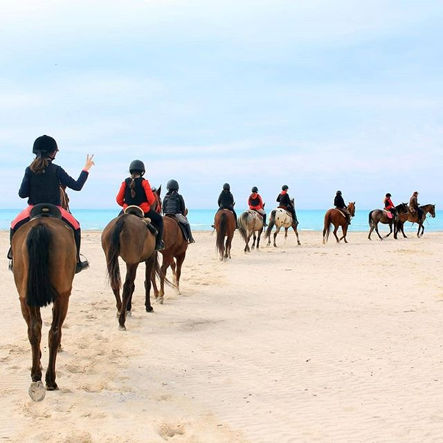 The gang at the beach 🐎🏖️💞🌊 #ridingclub #horsebackriding ・・・ 📷: San Clemente Riding Club, @sanclemhorses #teambuilding