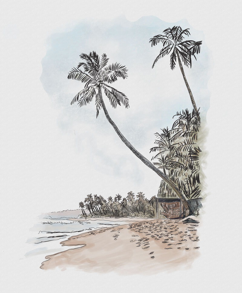 Image: Illustration of Arugam Bay (taken from our new Cocotails Menu - OUT SOON!)