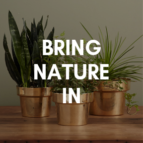 Bring nature in