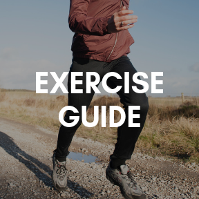 Exercise guide
