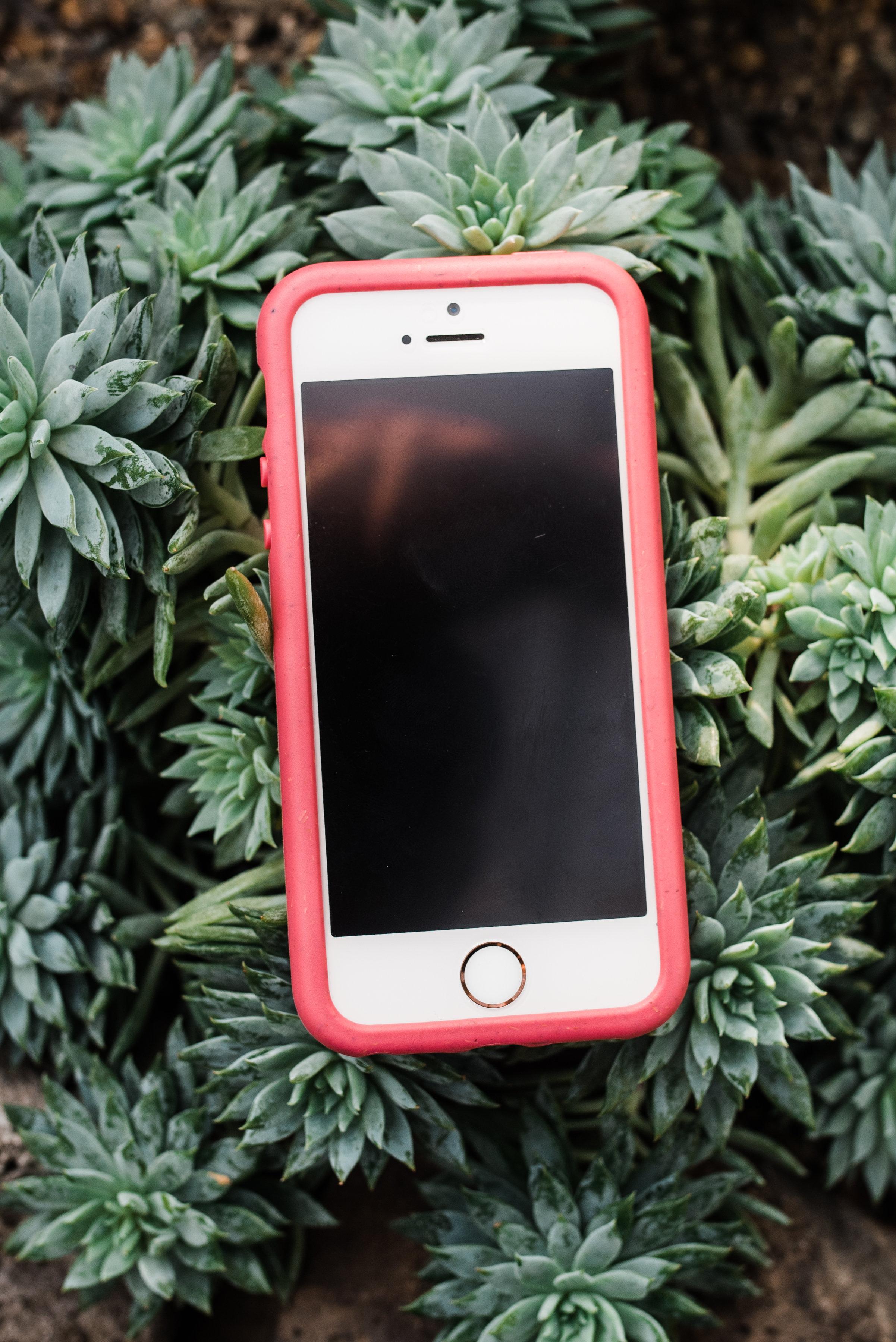 Pela-iphone-case-2.jpg