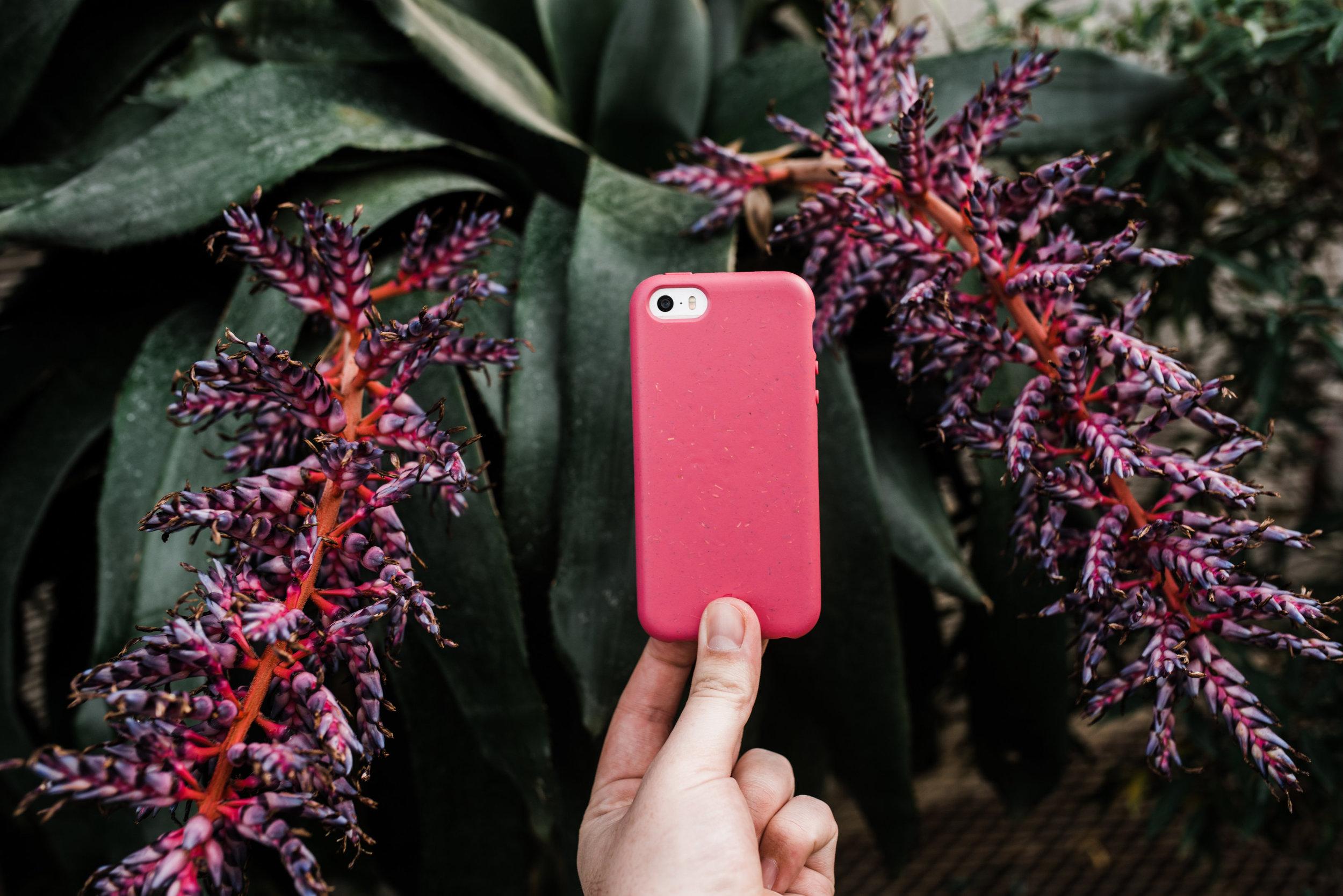 Pela-iphone-case-1.jpg