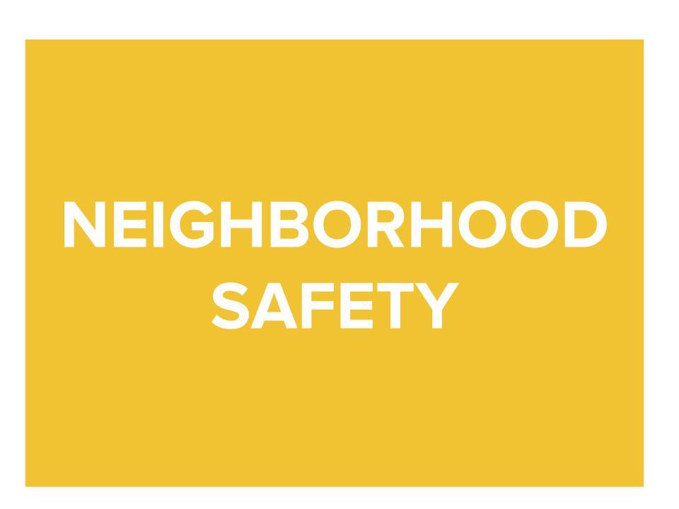 Neighborhood Safety logo.jpg