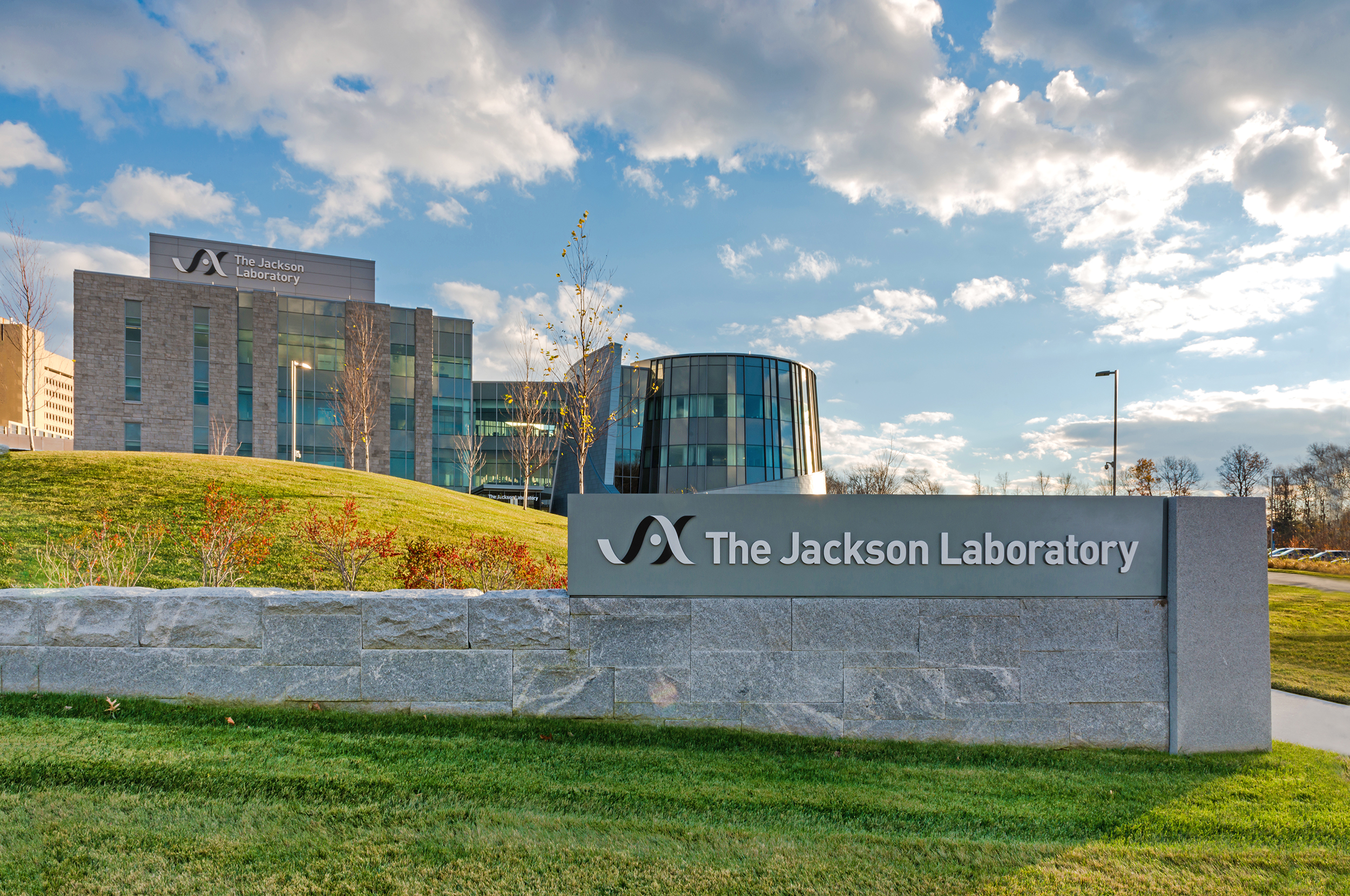 JacksonLabs-41_edit2-med.jpg