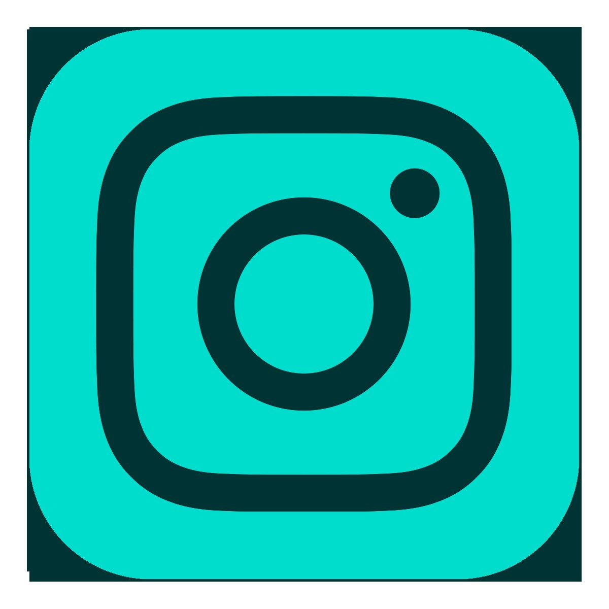 Instagram Logo - Lorien.png
