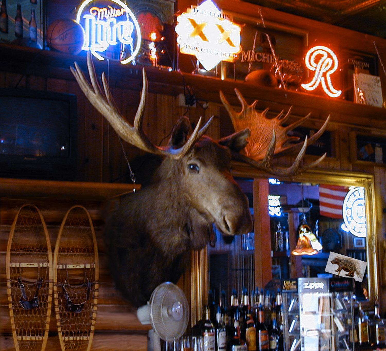 moose_ak-12.jpg