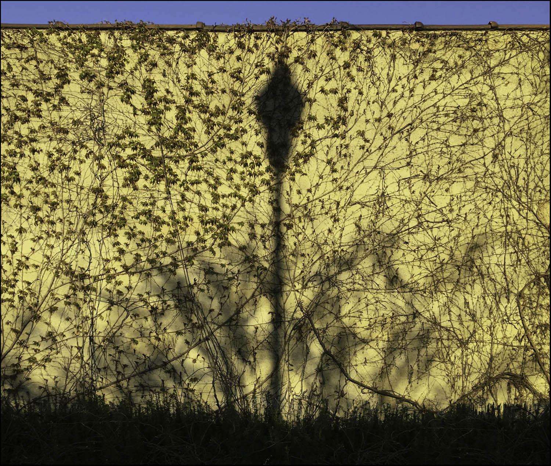 lampost_shadow_wall-sm.jpg