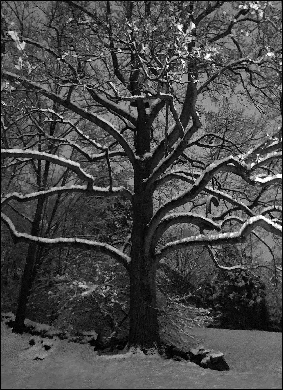 feb_snow_vb.jpg
