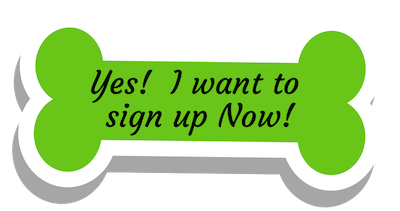 sign up now-2.png