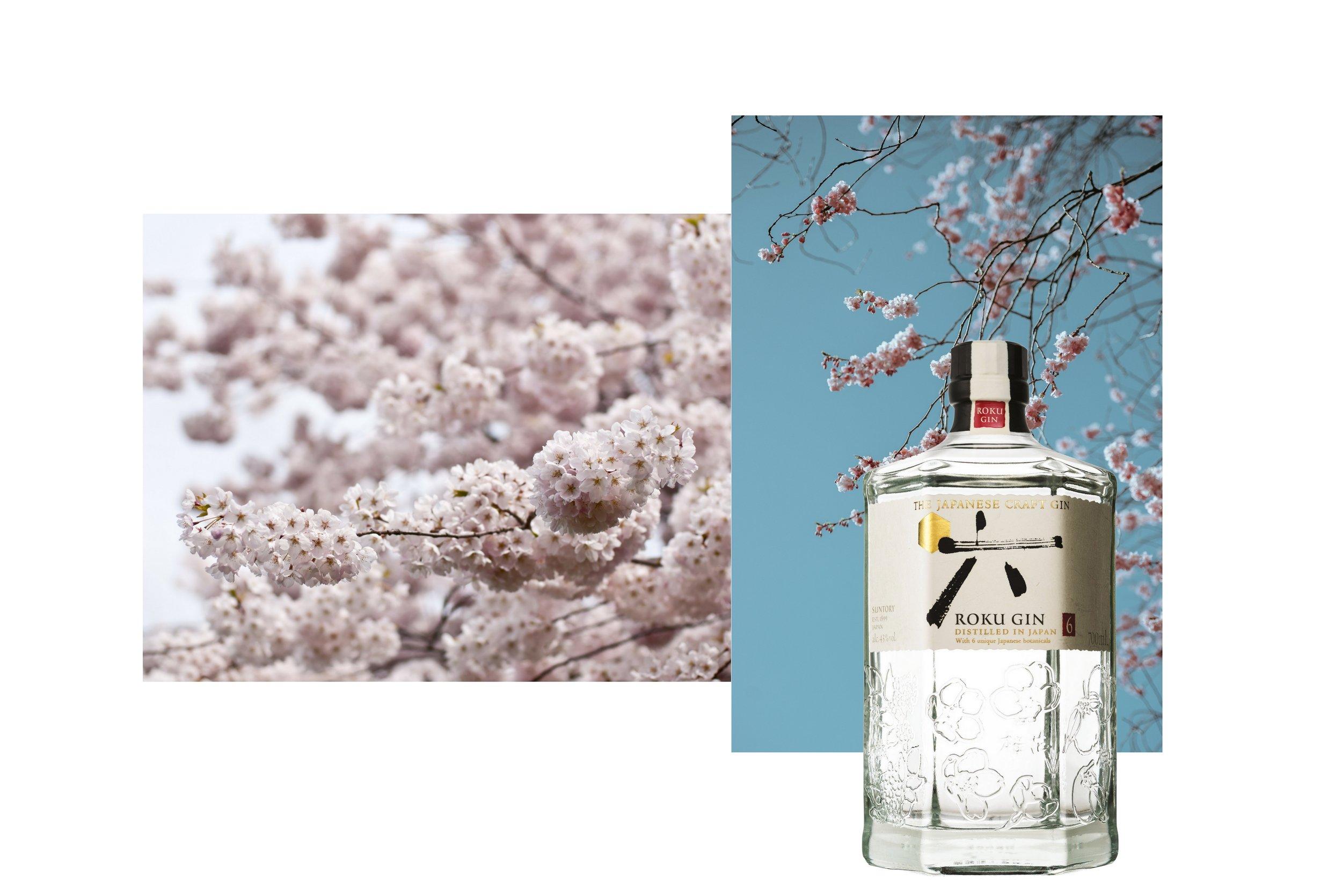 Japanese gin.jpg