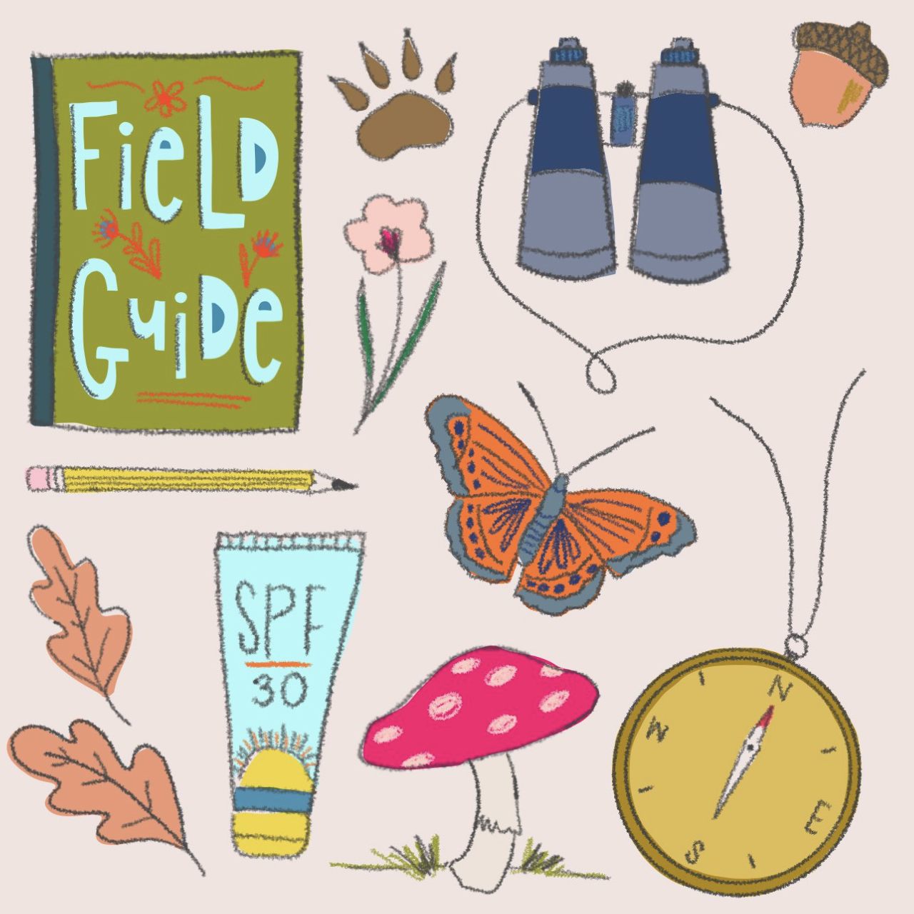 field supplies.png