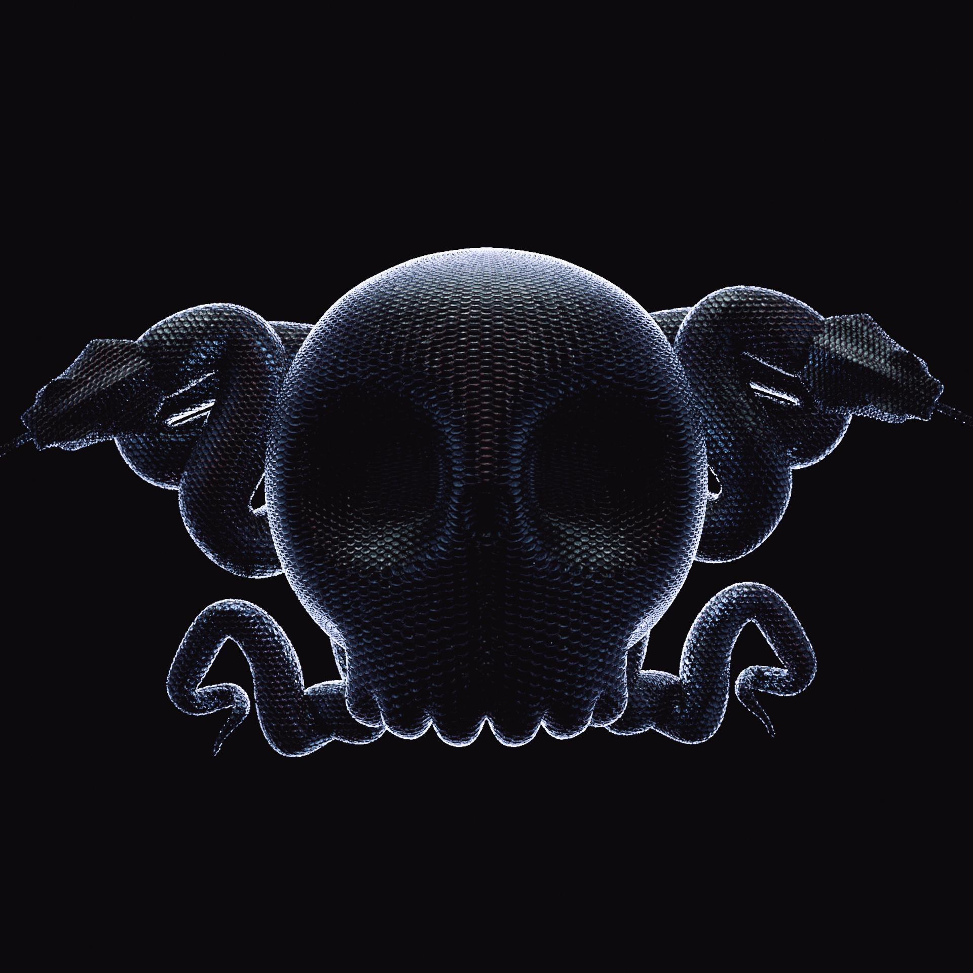 skull_snake_00001.jpg