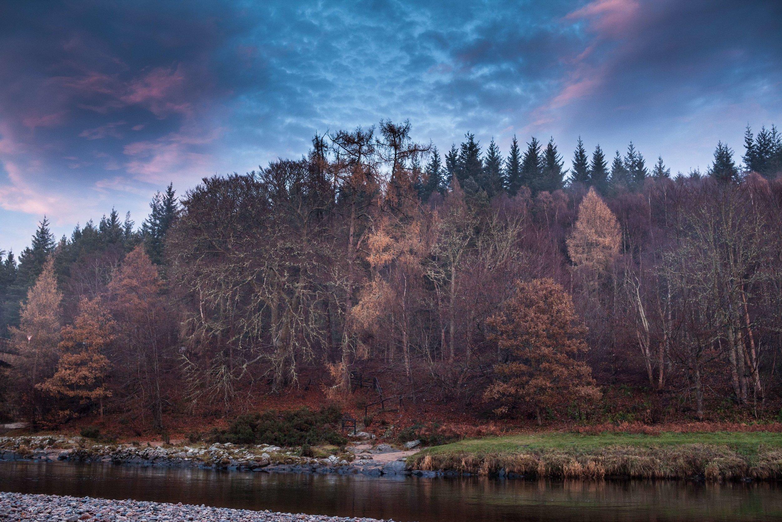 Scottish beauty  (1 of 1) copy.jpg
