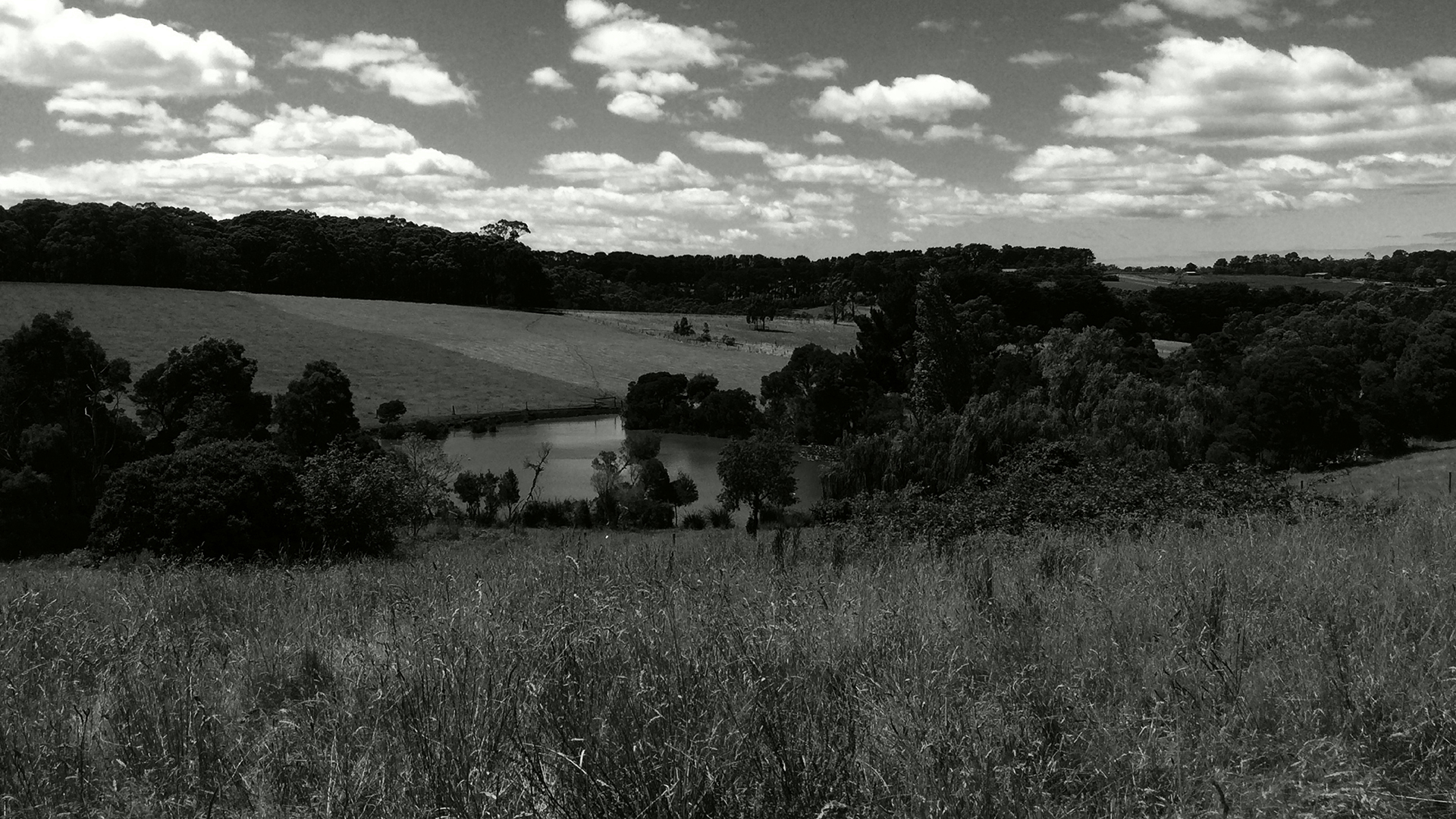 Main Creek Road2_1920x1080_.jpg
