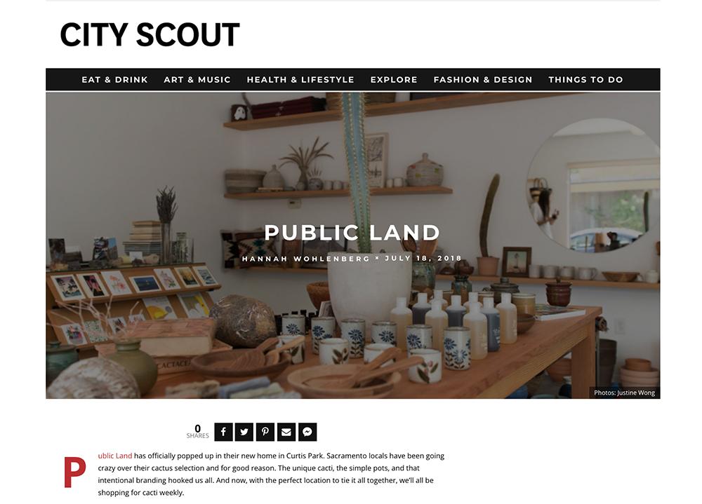 public_land_store_sacramento_cactus.jpg