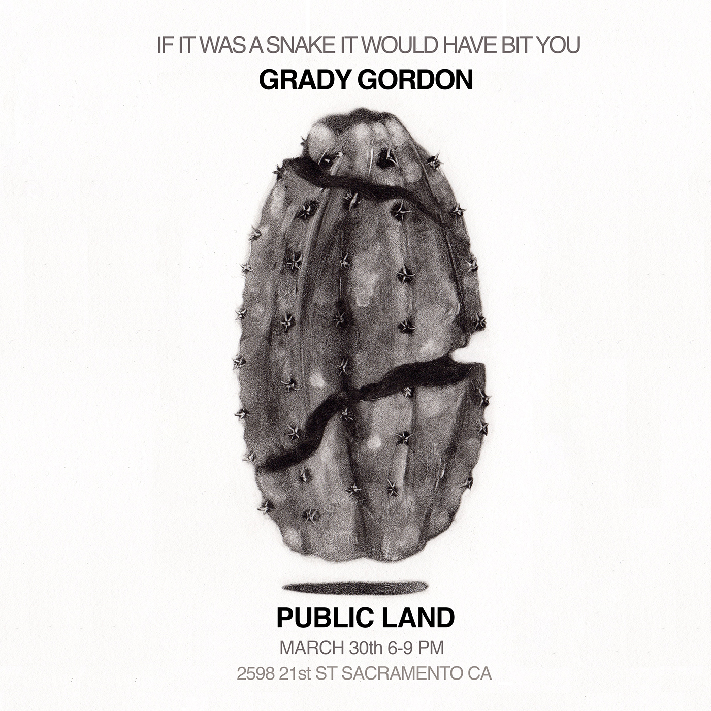 Grady Gordon art show in Public Land Sacramento