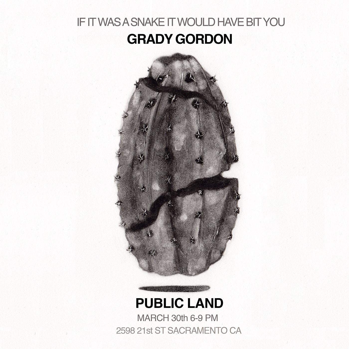 Grady Gordon cactus illustration at Public Land in Sacramento.