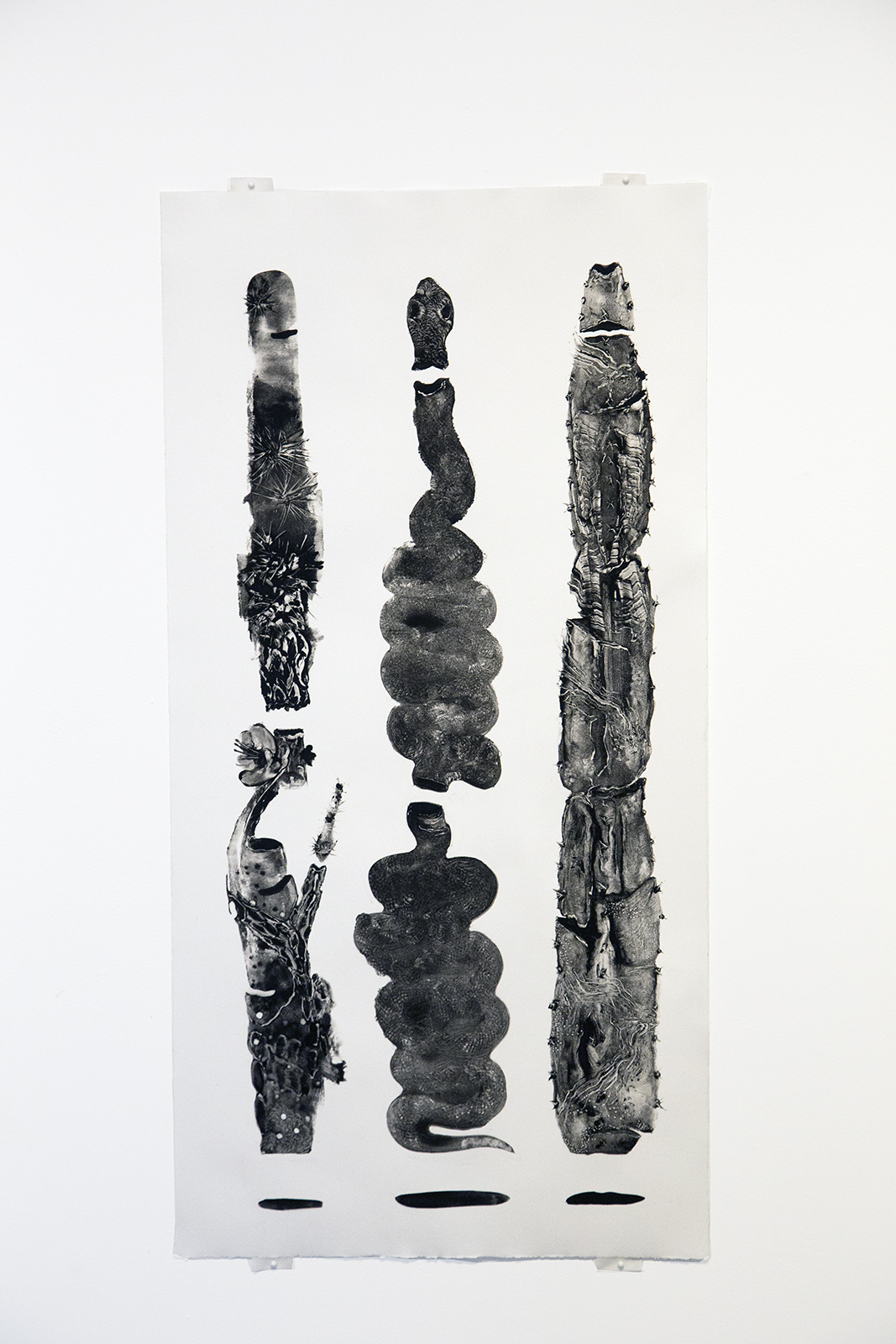 Grady Gordon at Public Land Gallery