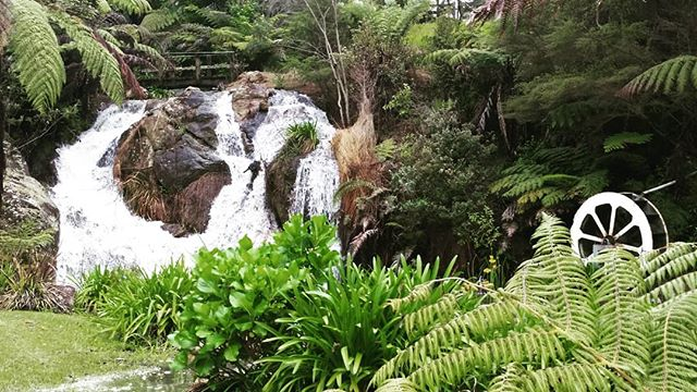 #nature'spower #waterfeatures #privateaccommodation #peaceful #largegardenwithbushwalks #nearCook'sBeach #Coromandel  #whereelse #theOysterRiverRetreat
